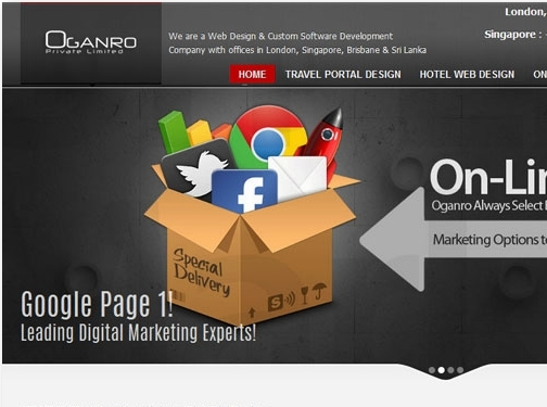 https://www.oganro.com/ website